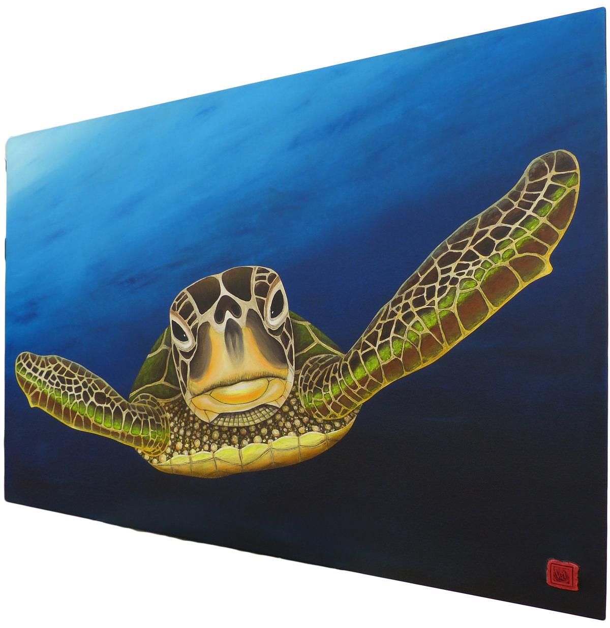 derecha-tortuga